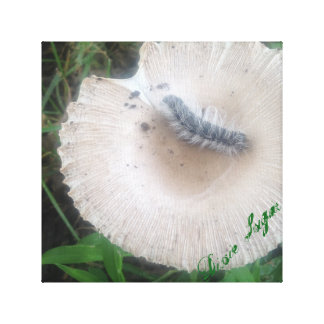 Nature print - Caterpillar