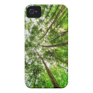 Nature Reaching For The Sky iPhone 4 Case