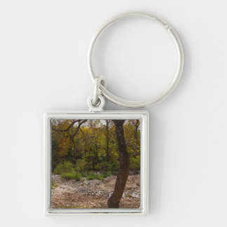 Nature Reaching Out Keychain