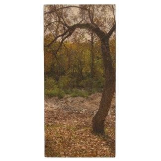 Nature Reaching Out Wood USB 3.0 Flash Drive