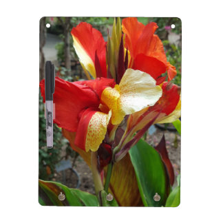 Nature Red Flower Floral Photography Dry Erase Board