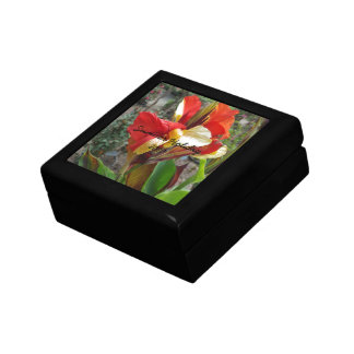 Nature Red Flower Floral Photography Gift Box
