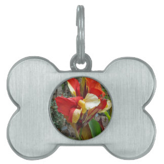Nature Red Flower Floral Photography Pet ID Tag