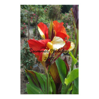 Nature Red Flower Floral Photography Stationery