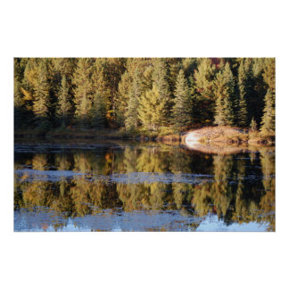 Nature Scenery Poster