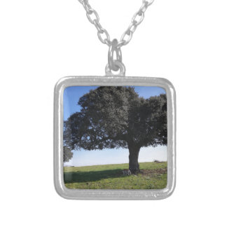 Nature Silver Plated Necklace