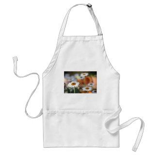nature standard apron