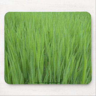 NATURE TEXTURES Mousepad Collection