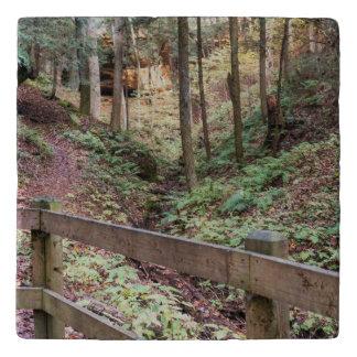 Nature Trail Walking Path Stone Trivet