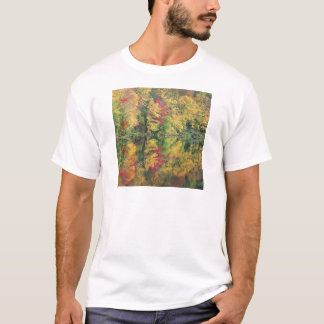 Nature Trees Autumn Colorful Lake Reflection T-Shirt