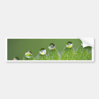 Nature Water Drops Connect with Cosmic Bumper Sticker