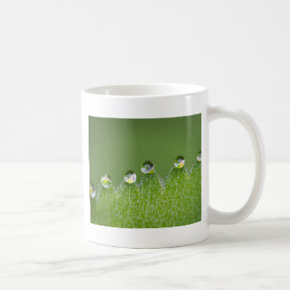 Nature Water Drops Connect with Cosmic Coffee Mug