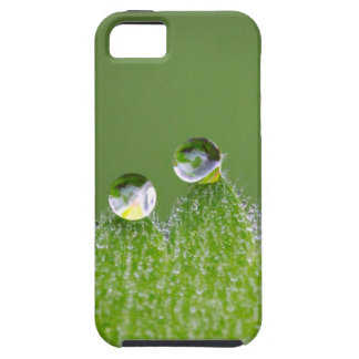 Nature Water Drops Connect with Cosmic iPhone 5 Cover