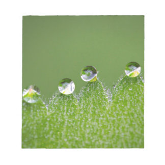 Nature Water Drops Connect with Cosmic Notepad