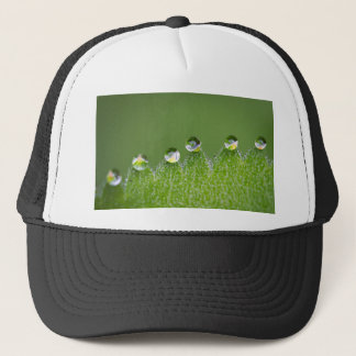 Nature Water Drops Connect with Cosmic Trucker Hat