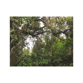 Naturel landscape toiles tendues