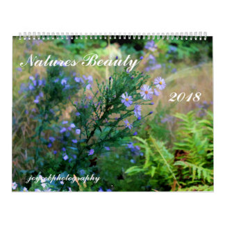 NATURES BEAUTY 2018 CALENDAR