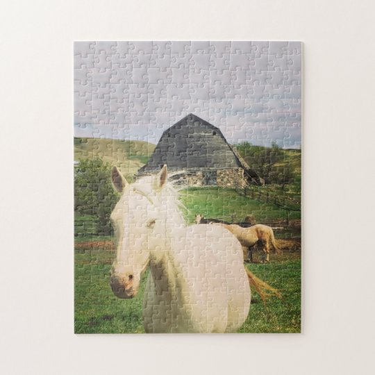 Natures Best - Little Horse on the Prairie Jigsaw Puzzle