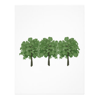 Natures Brush Letterhead