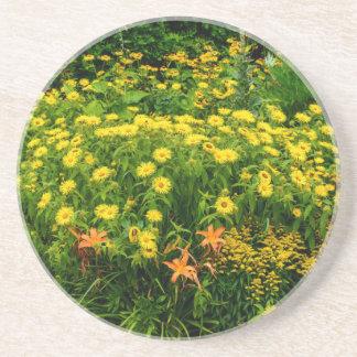 Natures Garden Coaster