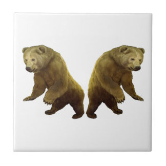 Natures Gifts Tile