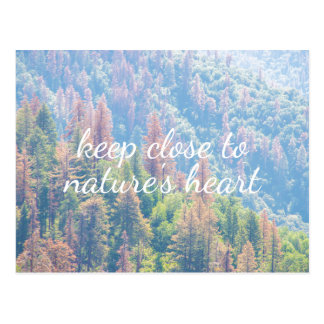 Nature's Heart - Pine Tree Landscape | Postcard