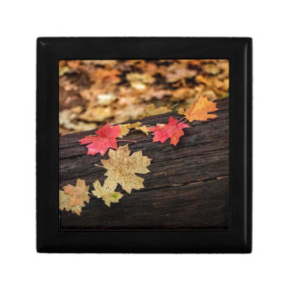Natures Leaves Gift Box