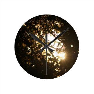 Natures light clock
