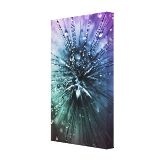 Natures Magic Canvas Print
