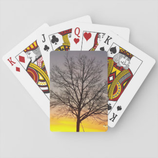 Natures Playing Cards