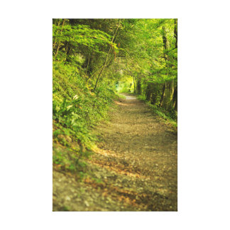 Nature's road canvas print