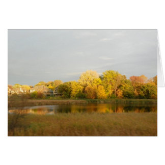 Nature's Widow Fall Colors  Greeting Card