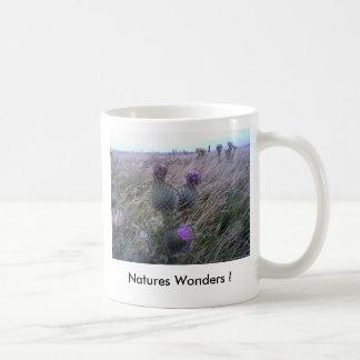 Natures Wonders ! Classic White Coffee Mug