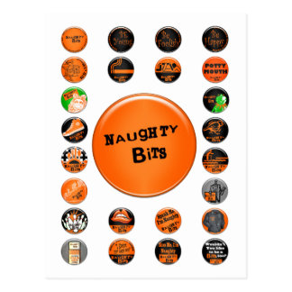 Naughty Bits Merit Badges Postcard