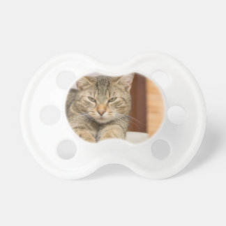 Naughty Cat Baby Pacifier