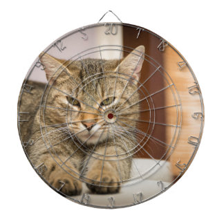 Naughty Cat Dartboard With Darts