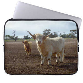 Naughty Highland Cows, 13inch Laptop Sleeve