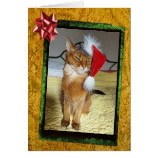 Naughty Kitty Christmas Card