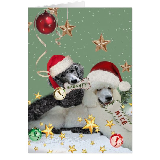 Naughty Or Nice Poodle Christmas Cards