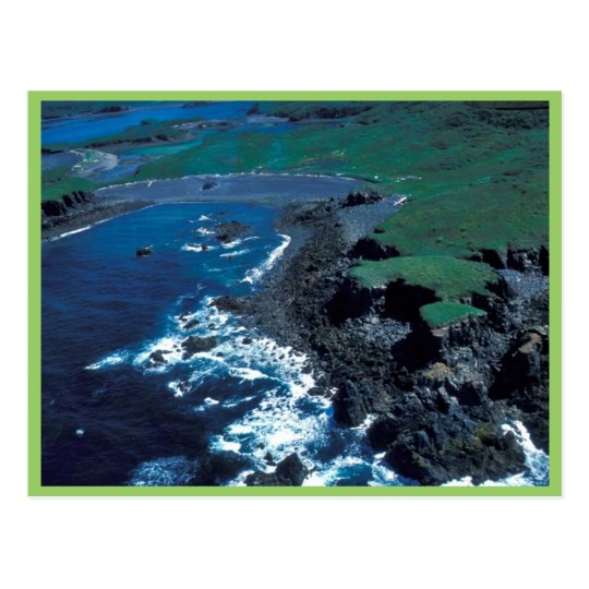 Naugolka Point Coastline, Kodiak Postcard