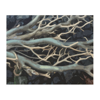 Nautical Coral Art Wood Canvas Print
