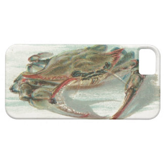 Nautical steampink vintage crab preppy drawing iPhone 5 case