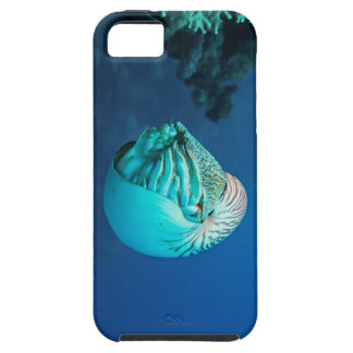 Nautilus on the Great Barrier Reef Case For The iPhone 5