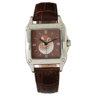Nautilus shell - cocoa brown and white wristwatches