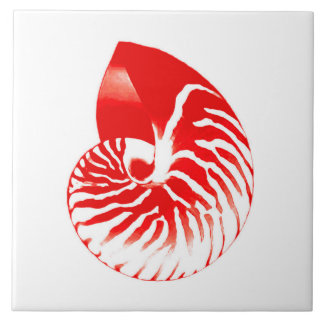 Nautilus shell - dark red and white tile