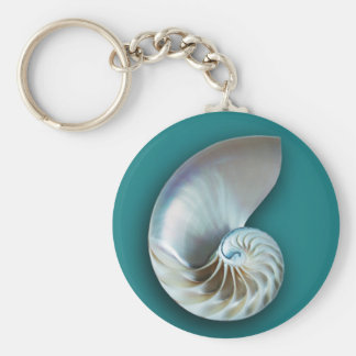 Nautilus Shell Key Chain