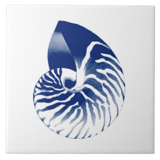 Nautilus shell - navy blue and white tile
