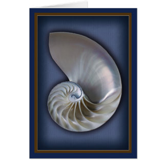 Nautilus Shell Vertical 2 Card