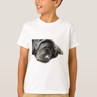 Neapolitan Mastiff Tee Shirt