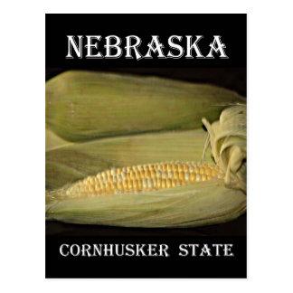 Nebraska Cornhusker State Postcard